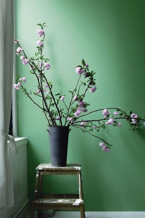 Green, Branch, Flower, Ikebana, Houseplant, Flowerpot, Plant, Pink, Twig, Tree,