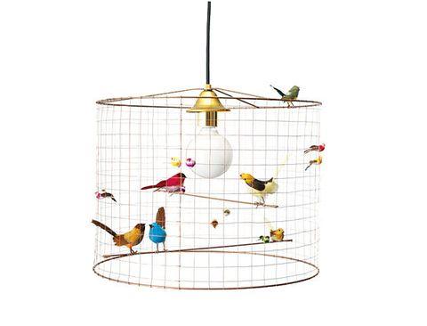 Cage, Bird supply, Product, Bird, Pet supply, Lighting accessory,