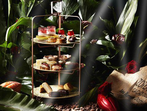 Plant, Still life photography, Photography, Finger food, Interior design, Still life, Food, Cuisine, Flower,