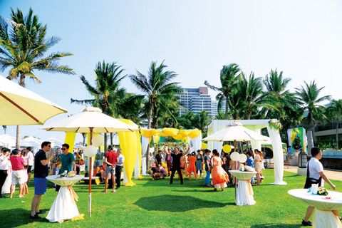 Event, Ceremony, Party, Fun, Leisure, Palm tree, Lawn, Recreation, Vacation, Arecales,