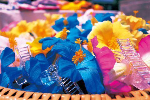 Blue, Orange, Electric blue, Plastic, Festival, Hair accessory, Cut flowers,