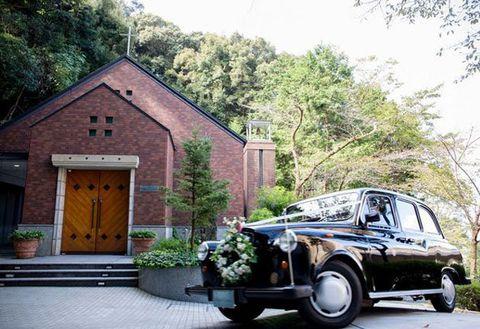 Plant, Automotive lighting, Headlamp, House, Tree, Classic car, Flowerpot, Building, Fender, Door,