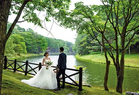People in nature, Photograph, Bride, Nature, Green, Dress, Wedding dress, Natural landscape, Ceremony, Bridal clothing,