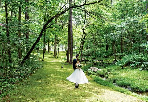 People in nature, Woodland, Photograph, Forest, Nature, Tree, Natural environment, Green, Natural landscape, Dress,