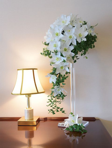 White, Flower, Flowerpot, Plant, Cut flowers, Houseplant, Lighting, Vase, Ikebana, Floral design,