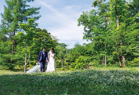 Photograph, Tree, Bride, Natural landscape, Ceremony, Wedding, Plantation, Dress, Grass, Botany,