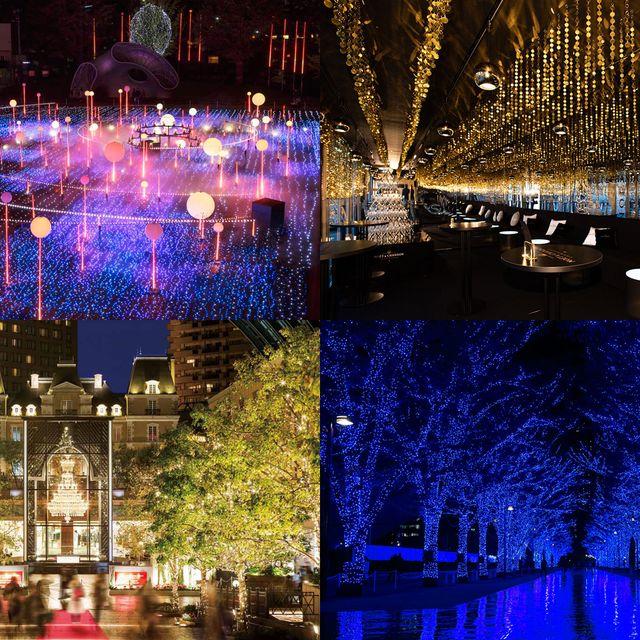 Lighting, Light, Purple, Landmark, Night, Christmas lights, Tree, Sky, Water, Architecture,