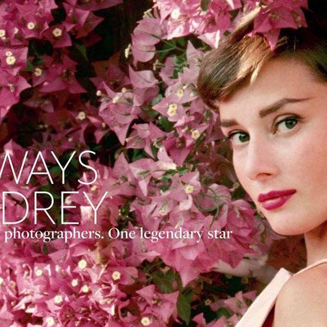 Petal, Lip, Flower, Eyelash, Pink, Hair accessory, Headgear, Beauty, Fashion accessory, Headpiece,