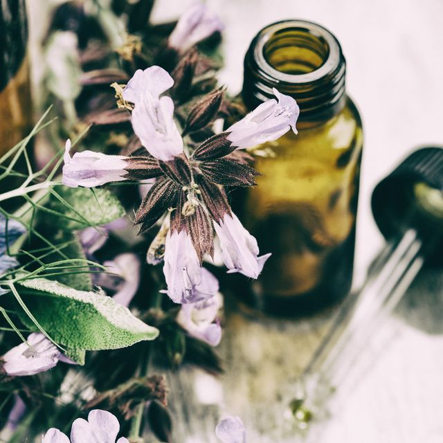 Petal, Flower, Still life photography, Flowering plant, Herbaceous plant, Pollen, Mason jar, Shadow, Bottle, Glass bottle,