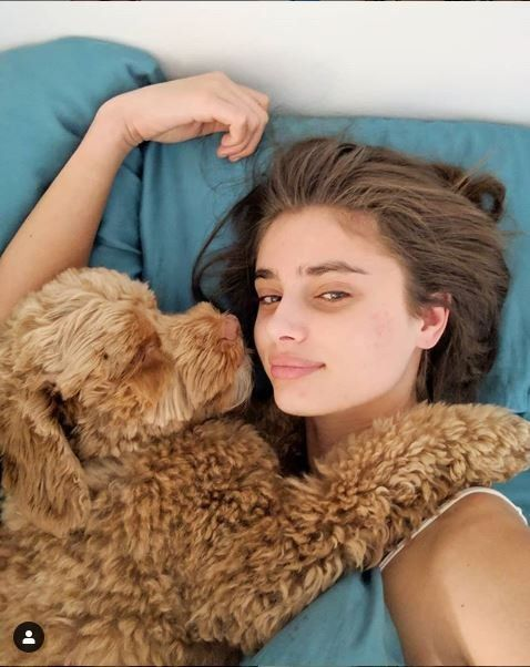 Fur, Beauty, Teddy bear, Textile, Ear, Brown hair, Long hair, Photography, Fur clothing, Companion dog,
