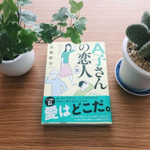 Flowerpot, Houseplant, Leaf, Cactus, Font, Plant, Grass, Bonsai, Herb, Succulent plant,