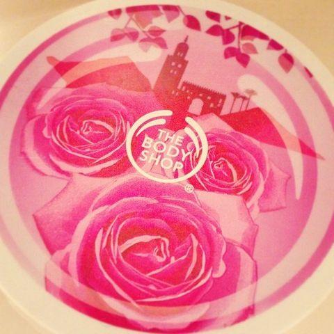 Petal, Flower, Pink, Magenta, Flowering plant, Garden roses, Rose family, Rose order, Hybrid tea rose, Rose,