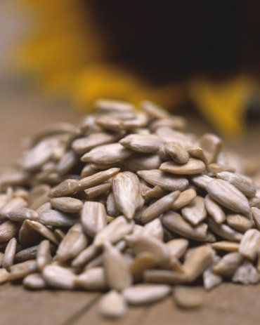 Ingredient, Seed, Close-up, Still life photography, Produce, Macro photography, Animal feed,