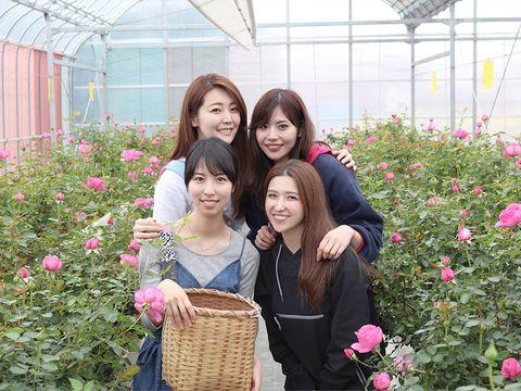 Smile, Eye, Petal, Flower, Happy, Pink, Shrub, Basket, Flowering plant, Garden,