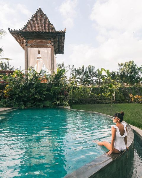 Water, Swimming pool, Leisure, Vacation, Botany, Tree, Summer, Tourism, Fun, House,