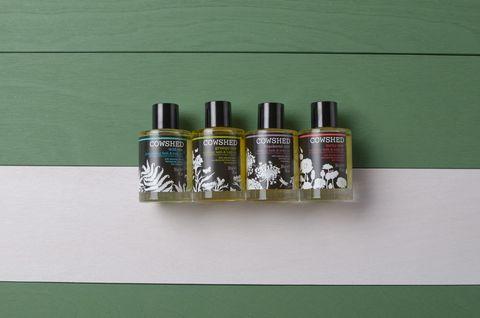 Green, Shelf, Bottle, Glass bottle, Liquid,