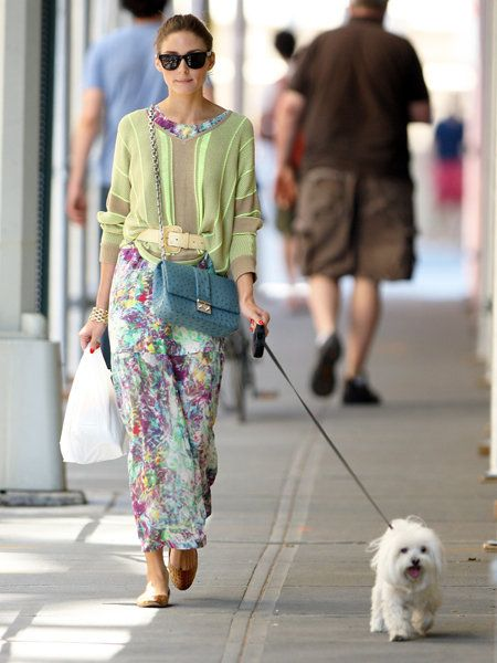 Clothing, Eyewear, Human, Dog breed, Dog, Carnivore, Textile, Bag, Sunglasses, Mammal,