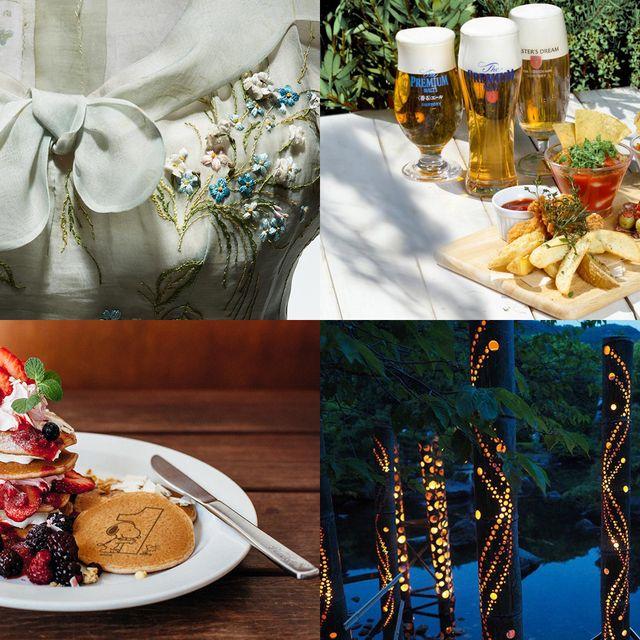 Food, Cuisine, Serveware, Beer, Sweetness, Dishware, Tableware, Dessert, Dish, Drink,