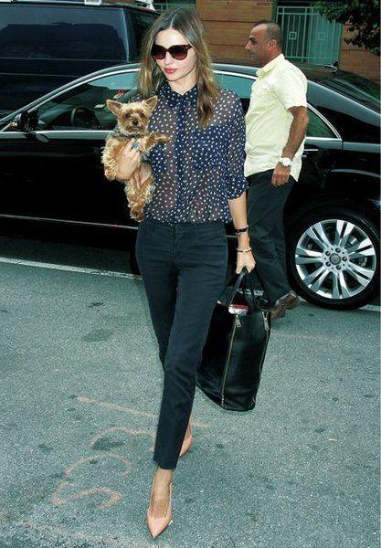 Clothing, Eyewear, Leg, Glasses, Trousers, Outerwear, Sunglasses, Bag, Vehicle door, Style,