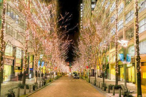 Lighting, Green, Infrastructure, Road, Neighbourhood, Public space, Street, Urban area, City, Town,