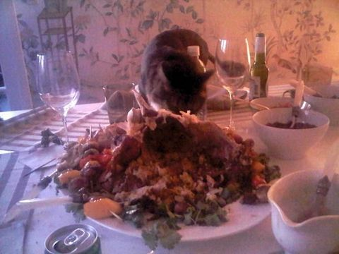 Serveware, Dishware, Food, Glass, Stemware, Drinkware, Cuisine, Tableware, Barware, Plate,