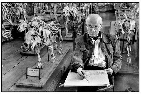 Glasses, Skeleton, Bone, Monochrome, Rib, Black-and-white, Dinosaur, Monochrome photography, Extinction, Skull,