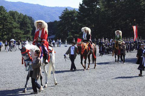Horse tack, Working animal, Pole, Bridle, Horse, Rein, Walking, Flag, Pack animal, Horse supplies,
