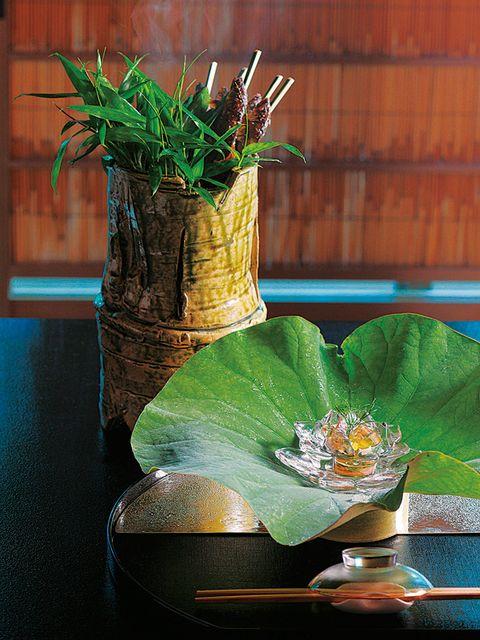 Leaf, Petal, Terrestrial plant, Still life photography, Flowering plant, Serveware, Flowerpot, Houseplant, Annual plant, Plant stem,