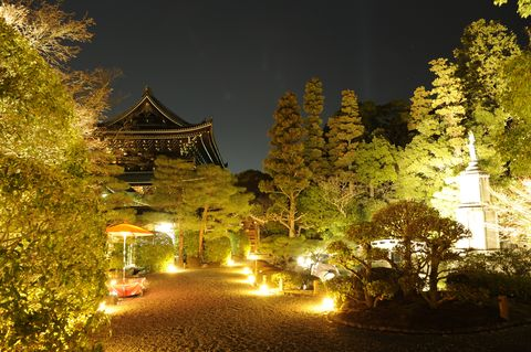 Night, Chinese architecture, Japanese architecture, Midnight, Shinto shrine, Pagoda, Temple, Landscape lighting, Tourist attraction, Shrine,