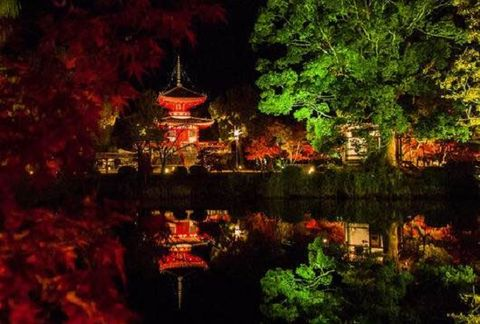 Nature, Vegetation, Chinese architecture, Landscape, Pagoda, Reflection, Pond, Japanese architecture, Botany, Garden,