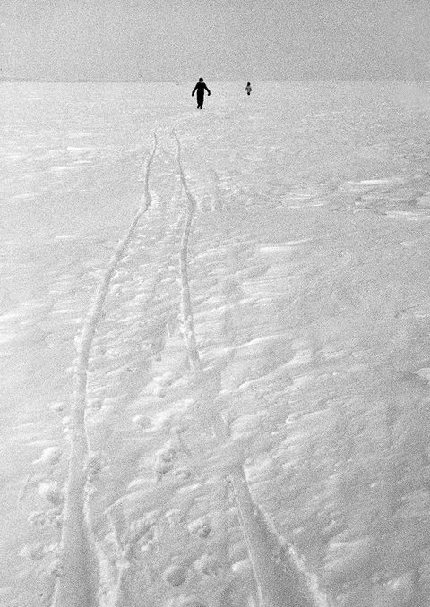 Monochrome photography, Winter, Monochrome, Black-and-white, Tints and shades, Slope, Shadow, Silhouette, Snow, Walking,