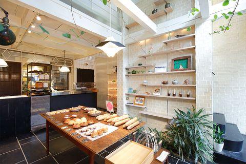 Interior design, Room, Ceiling, Floor, Flowerpot, Interior design, Light fixture, Houseplant, Shelving, Turquoise,