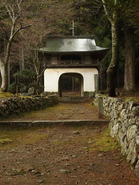 Arch, Soil, Trunk, Historic site, Stone wall,