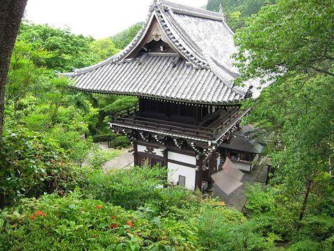 Vegetation, Nature, Chinese architecture, Architecture, Japanese architecture, Roof, Botany, Shrub, Spring, Place of worship,