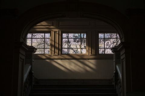 Light, Window, Architecture, Daylighting, Darkness, House, Room, Building, Sky, Tree,