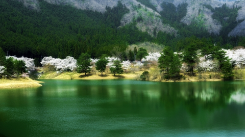 Natural landscape, Nature, Body of water, Water resources, Water, Lake, Tarn, Reflection, Nature reserve, Green,