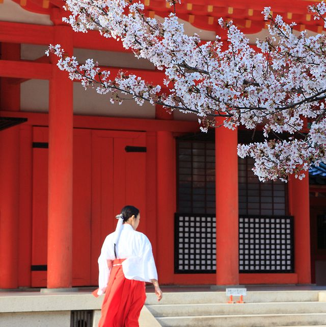 Red, Standing, Temple, Street fashion, Maroon, Twig, Blossom, Chinese architecture, Coquelicot, Column,