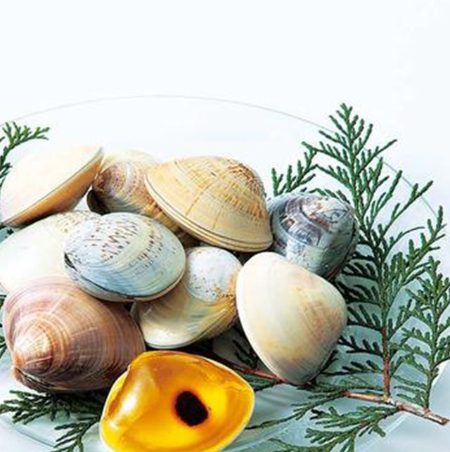 Ingredient, Natural material, Still life photography, Shell, Produce, Herb, Whole food, Molluscs, Natural foods, Conifer,