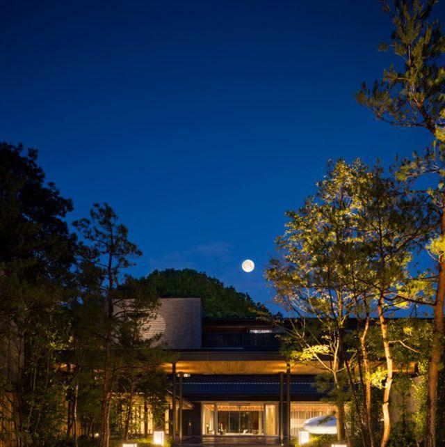 Astronomical object, Night, Sunlight, Walkway, Moonlight, Garden, Celestial event, Shade, Landscape lighting, Moon,