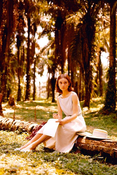 Dress, Sitting, People in nature, Leaf, Sunlight, Deciduous, Beauty, Autumn, Forest, Spring,