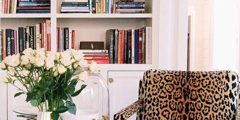 Room, Interior design, Shelf, Shelving, Bookcase, Furniture, Home, Living room, Interior design, Bouquet,