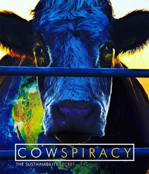 Bovine, Dairy cow, Sky, Snout, Poster, Cow-goat family, Working animal, Organism, Livestock, Font,