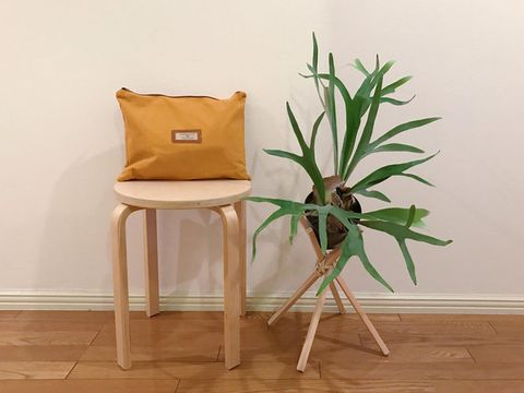 Furniture, Chair, Table, Houseplant, Plant, Flower, Room, Flowerpot, Floor, Stool,