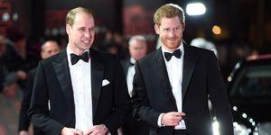 ウィリアム王子とヘンリー王子