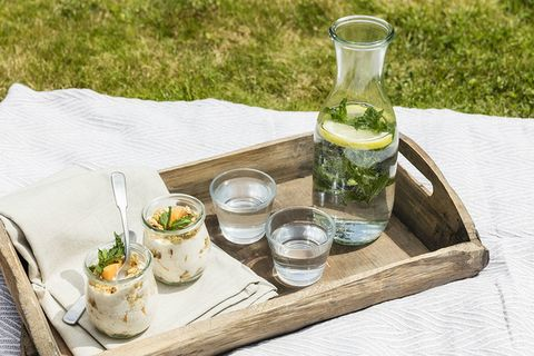 Food, Table, Drink, Picnic, Mojito, Recreation, Dish, Herb, Cuisine,