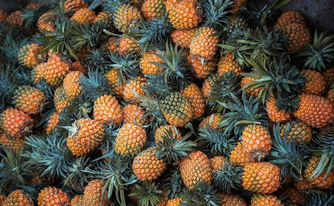 Pineapple, Plant, sitka spruce, Fruit, Ananas, Colorado spruce, Tree, Natural foods, Bromeliaceae, Pine family,