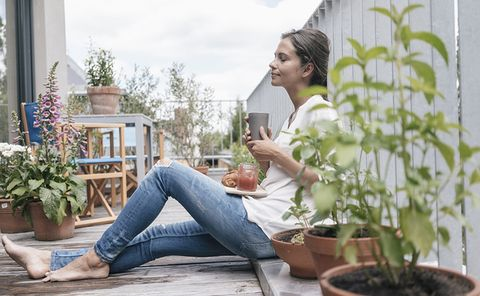 Houseplant, Sitting, Jeans, Leg, Denim, Plant, Room, Textile, Photography, Flower,