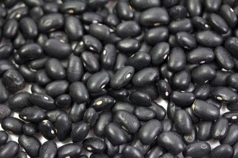 Food, Bean, Velvet bean, Black gram, Frijoles negros, Superfood, Vegetable, Plant, Java coffee, Jamaican blue mountain coffee,