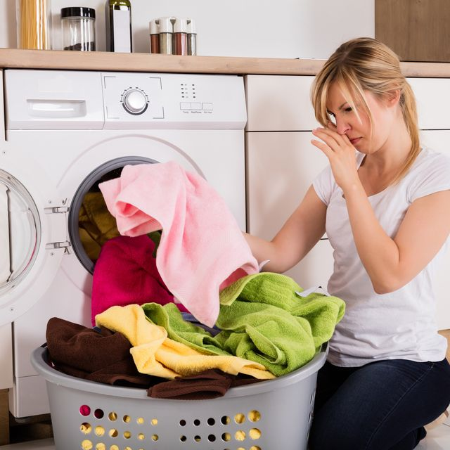 Major appliance, Washing machine, Clothes dryer, Laundry, Home appliance, Washing, Homemaker, Laundry room, Room, Small appliance,
