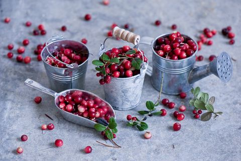 Berry, Food, Fruit, Pink peppercorn, Cranberry, Superfood, Plant, Zante currant, Superfruit, Lingonberry,